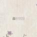 RHAPSODY 8006-3